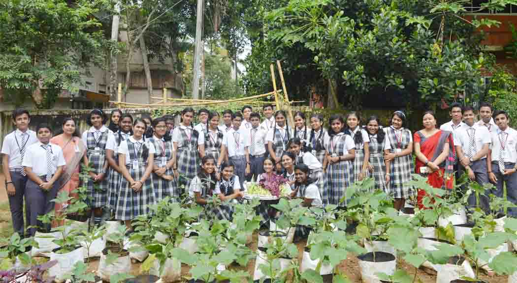 Students Harvested the Vegetables